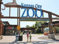 The Kansas City Zoo not only gives you that up close and personal feeling to the animals, but also offers unique ways to see the animals. Several of the animals' habitats are open and children are able to pet the animals or feed them. The Kangaroos, however, are in a field at a distance, but open range giving you a feel that you are actually in Australia.
