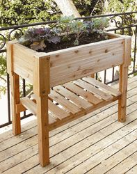 http://site.cleanairgardening.com/info/vegetable-container-gardening-for-beginners.html