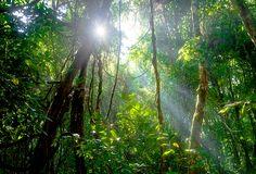 Oil Pastel Landscape, Nature, Photography, Naturaleza, Photograph, Fotografie, Photoshoot, Nature Illustration, Off Grid