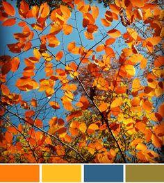 fall colour palette