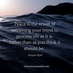 Peace Of Mind Quotes, Inner Peace Quotes, Mind Thoughts, Negative Thoughts, Mindfulness Quotes, Mindfulness Meditation, Quiet Quotes, Finding Inner Peace, Best Brains