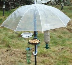 Clever Umbrella Bird Feeder: this keeps seed dry, protects birds from sky predators and (wow!) is super easy