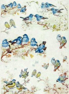 Rice Paper for Decoupage Decopatch Scrapbook Craft Sheet Vintage Group of Birds Decoupage Vintage, Vintage Ephemera, Vintage Cards, Vintage Paper, Rice Paper Decoupage, Decoupage Art, Image 3d, Decoupage Printables, Motifs Animal
