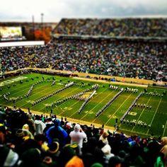 Michigan State vs. University of Michigan Football Game   November 2, 2013 #Padgram