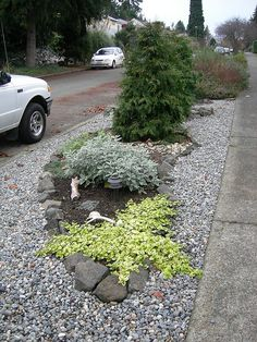 Parking strip garden with river rock mulch