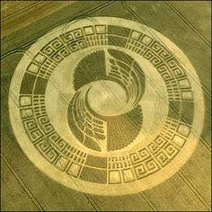 Mayan Wheel Crop Circle : Silbury Hill, Wiltshire 2-3 August 2004