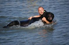 Paranoiaguda - Mundo Animal - Homem salva urso de afogamento
