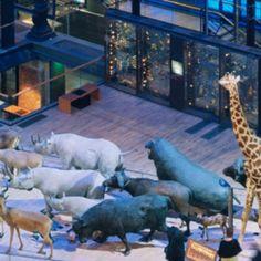 A l'occasion de la Nuit des musées 2017 le samedi 20 mai, le Muséum national d'Histoire naturelle accueille les familles jusqu'à minuit.   ...