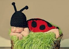 Lollipop Sugar Shop ~ Products ~ Lady Love Bug Knit photography props baby outfit ~ Shopify
