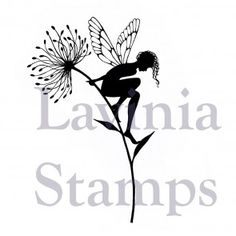 Lavinia StampsSeeing is Believing