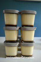 Flan au caramel (Multidélice)