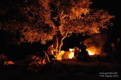 night camping. 90 euro - includes dinner and wine, campfire, sleeping bag, breakfast and jeep transfer to and from.