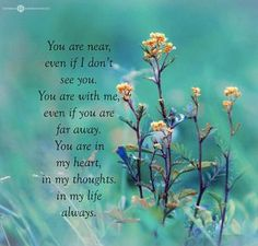 Miss you dad. Missing Loved Ones, Missing My Son, Miss Mom, Miss You Dad, Grieving Quotes, Pomes, I Carry Your Heart, Grief Loss, Joyce Meyer