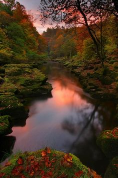The Strid, Bolton Abbey, Yorkshire Dales, United Kingdom-16 Beautiful Photos of Incredible Fall