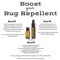 """It's that time of year! doTERRA has a bug repellent called TERRASHIELD. It is an AMAZING product but sometimes people want more of a """"kick"""" to their Terrashield and are looking for more recipes. Here (Bottle Garden Essential Oils) Essential Oil Bug Spray, Lemongrass Essential Oil, Eucalyptus Essential Oil, Best Essential Oils, Essential Oil Uses, Mosquito Repellent Essential Oils, Lavender Oil Benefits, Bug Spray Recipe, Homemade Bug Spray"""
