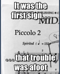 "Lololol as a part time ""piccolo player"" I understand! But the fear on people's faces when they see piccolo in a piece is just soooo funny! I love it!"