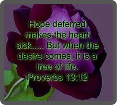 Image result for hope deferred makes the heart sick meaning KJV