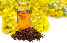 Wonderful benefits of mustard oil. Click on the link to get in touch with them.