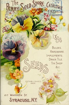 The Perry Seed Store Catalogue : ulbs, hardware...