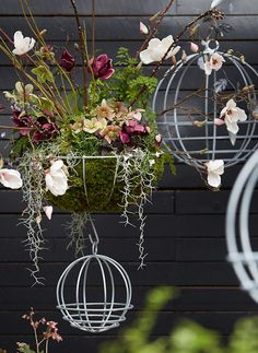 Our exclusive zinc baskets elevate the spring garden.