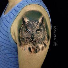 Animal Tattoos: What's Your Spirit Animal? Owl Tattoo Back, Bee Tattoo, Tattoo Wolf, Body Art Tattoos, Cool Tattoos, Arm Tattoos, Tatoos, Realistic Owl Tattoo, Whats Your Spirit Animal