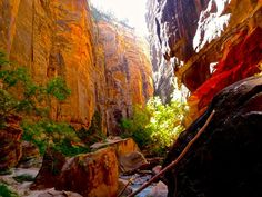 Narrow+Zion+Death+Valley+National+Park | Hiking the Narrows in Zion National Park