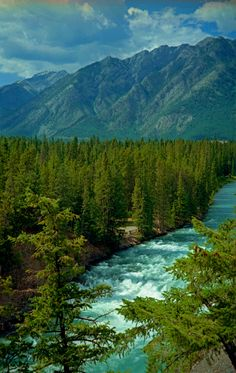 Bow River Rapids, Alberta | Canada (by Arnie Rose)