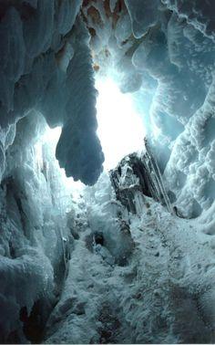 Los Nevados Natural Park, Andean Region