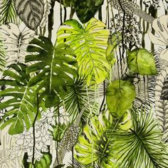 "Christian Lacroix for Designers Guild ""Soft Jardin Exo'chic"" in Rainette Art Tropical, Tropical Leaves, Tropical Fabric, Tropical Prints, Tropical Forest, Tropical Birds, Botanical Art, Botanical Illustration, Illustration Art"