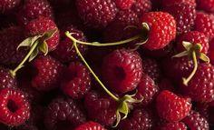 fruits and vegetables pinterest | raspberries