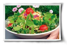 Sprout Salads