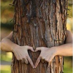 Mother Earth, Mother Nature, Hug Life, Environmentalist, We Are The World, New Forest, Jolie Photo, Foto Pose, The Great Outdoors