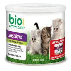 Just Born with DHA Milk Replacer for Kittens, Powder Formula ** You can find more details by visiting the image link.