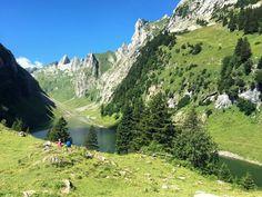 Fälensee Appenzell #mountain #switzerland  #greenliving #schweiz #natureza #wanderlust Wanderlust, Mountains, Travel, Nature, Switzerland, Viajes, Destinations, Traveling, Trips