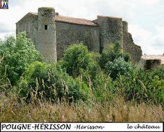 79POUGNE-HERISSON_herisson_chateau_106.jpg