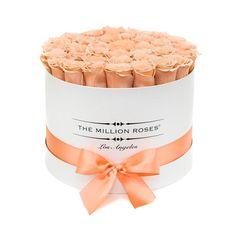 medium round box - white - peach ETERNITY roses peach eternity roses - the million roses The Million Roses, Million Flowers, Roses Luxury, Luxury Flowers, Spring Wedding Bouquets, Flower Bouquet Wedding, Flower Bouquets, Forever Rose, Box Roses