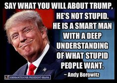 Funny Quotes About Donald Trump by Comedians and Celebrities: Andy Borowitz on Stupid People