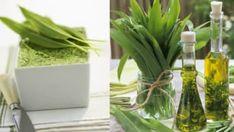 Kde najít medvědí česnek a jak ho rozeznat od jedovaté konvalinky? Celery, Detox, Glass Vase, Food And Drink, Herbs, Fresh, Vegetables, Plants, Syrup