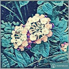 # Wave of # PaintBrush 🎬39*🎨Radom Effects +a% Square size. @PaintBrush.ai = @DreamScopeApp _offered by -* Lambda Labs _#DreamScope #PaintBrush #PaintBrushApp #DreamScopeApp #PaintBrushEffects