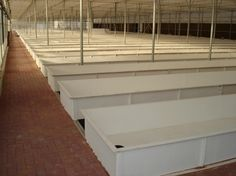 Five largest and longest running commercial aquaponics systems? - Aquaponic Gardening