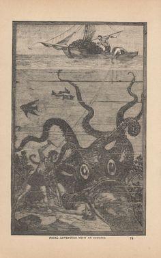 MEN BATTLING GIANT SQUID GIANT OCTOPUS SEA MONSTERS ANTIQUE ENGRAVING ART 1887 #Vintage Giant Squid, Animal Art Prints, Engraving Art, Sea Monsters, Pet Stuff, Sea Creatures, Octopus, Mood Boards, Mermaids