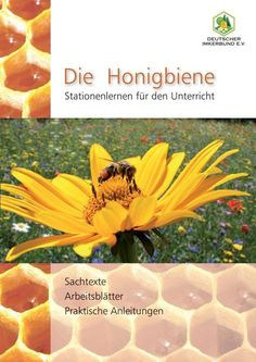 Die Honigbiene - Stationenlernen fŸr den Unterricht / Deutscher Imkerbund veršffentlicht Material fŸr Sekundarstufe