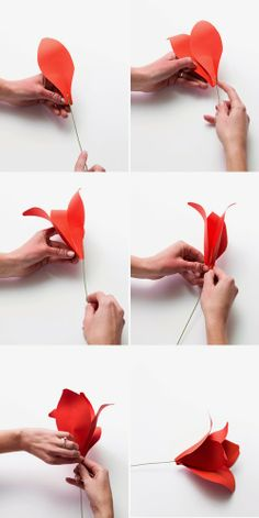 DIY holiday amaryllis paper flower instructions and template
