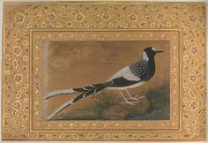 """""""Spotted Forktail"""", Folio from the Shah Jahan Album Artist: Painting by Abu'l Hasan (Indian, born ca. active Calligrapher: Mir 'Ali Haravi (d. Object Name: Album leaf Date: recto: ca. Mughal Paintings, Islamic Paintings, Mughal Empire, Iranian Art, Turkish Art, Illuminated Manuscript, Illuminated Letters, Thing 1, Bird Art"""