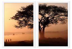 Tree Diptych: Hazy Morning on OneKingsLane.com