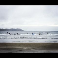Crowded waters in Tofino