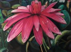 Water Lily, Serie: Velvet Flowers, pastel on velours, drawing, 2017, Ute Latzke