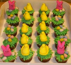 Bunny & Duck Easter Cupcakes