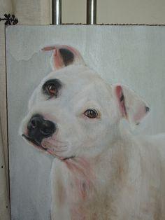 Pastel drawing of Staffie Elmo :-)