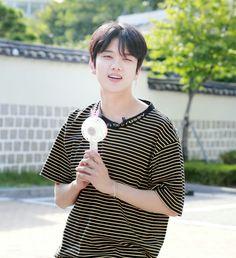 Bap Youngjae, Himchan, Angels, Kpop, Angel, Angelfish